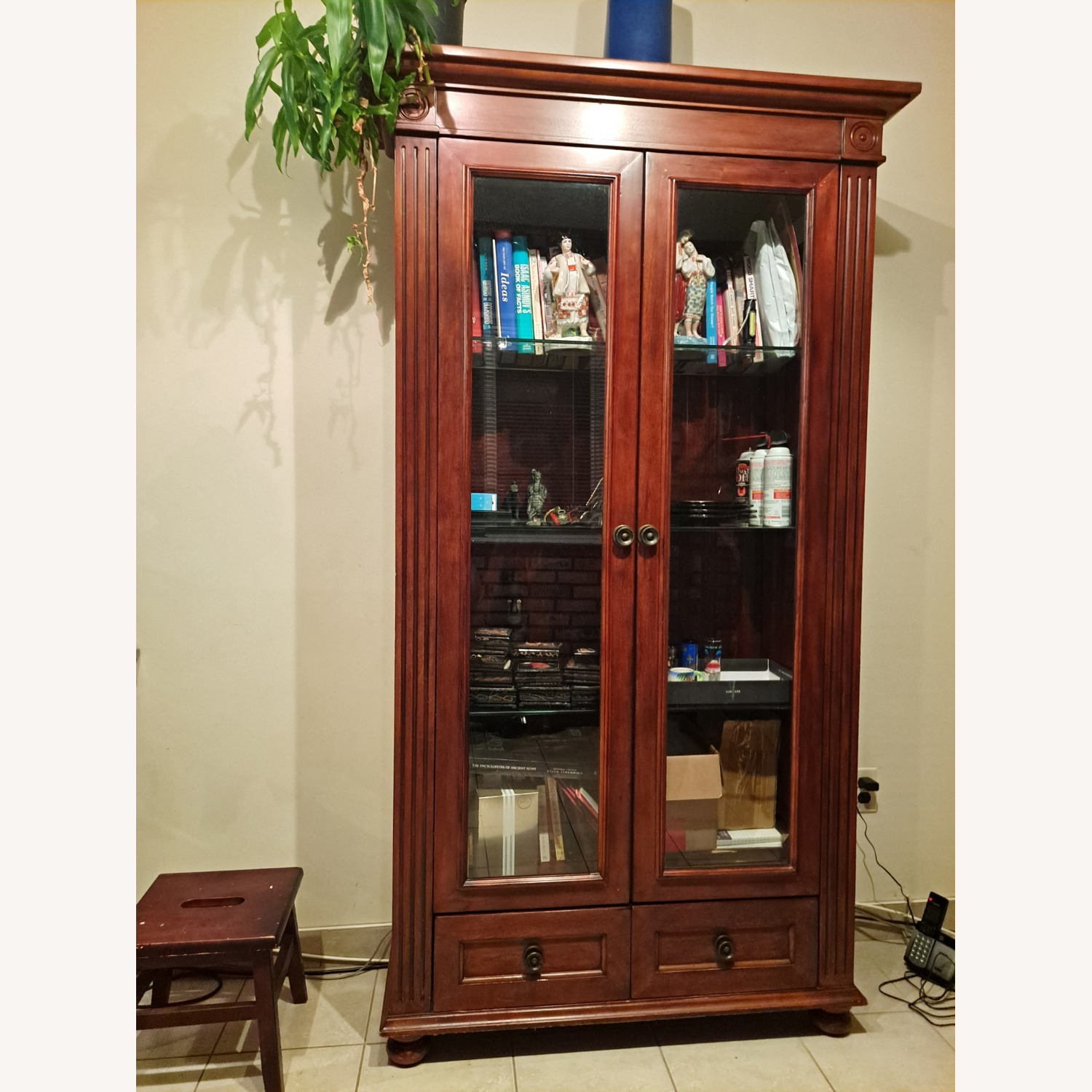 Wooden Importers Bookcace with Glass Doors - image-6