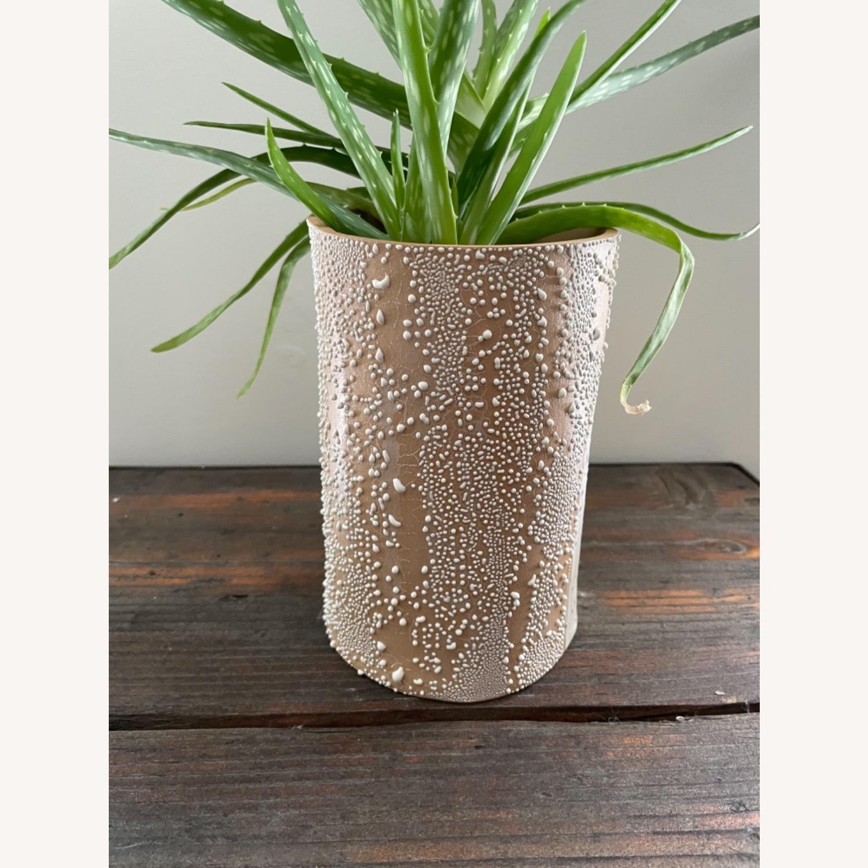 Handmade Curious Clay Rainbow Planter & Plate - image-4