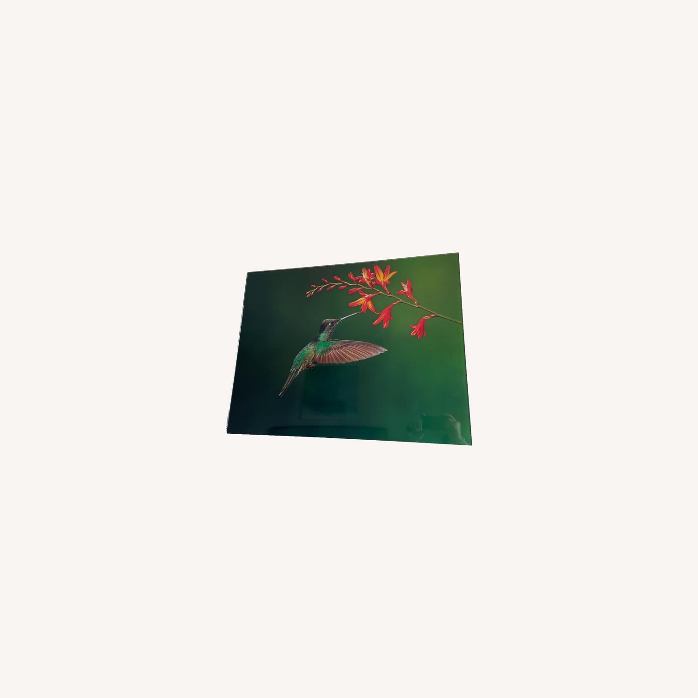 Custom Print on Glass of Hummingbird Photo - image-0