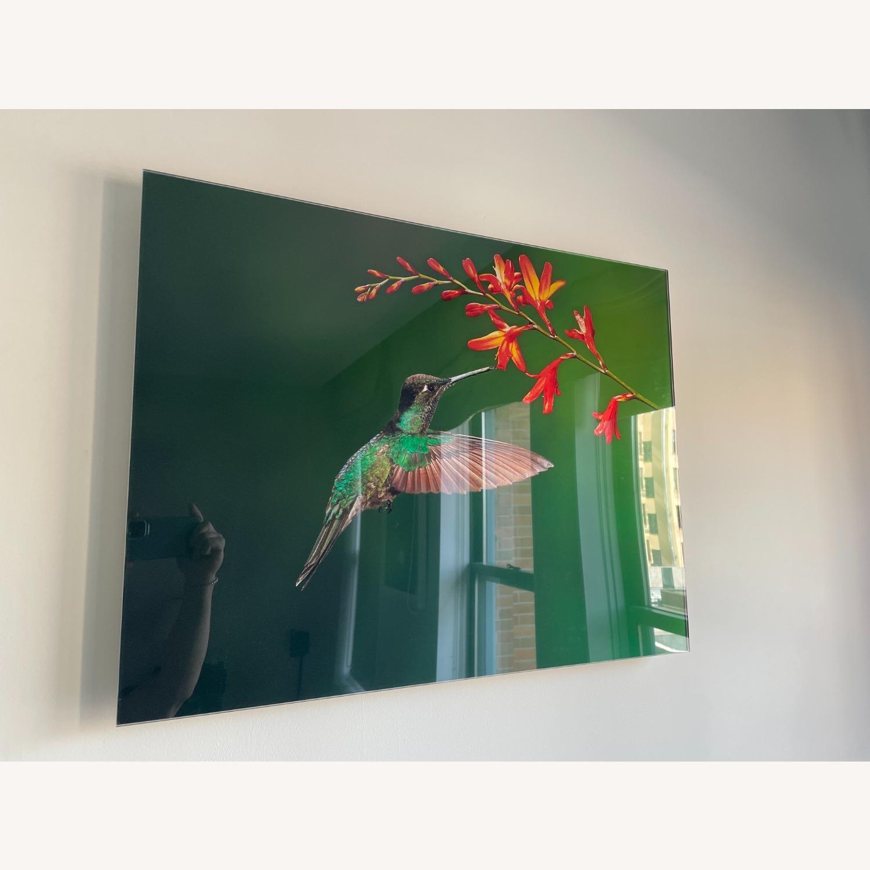 Custom Print on Glass of Hummingbird Photo - image-2