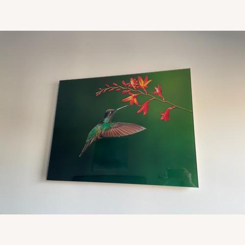 Used Custom Print on Glass of Hummingbird Photo for sale on AptDeco