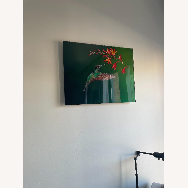 Custom Print on Glass of Hummingbird Photo - image-3