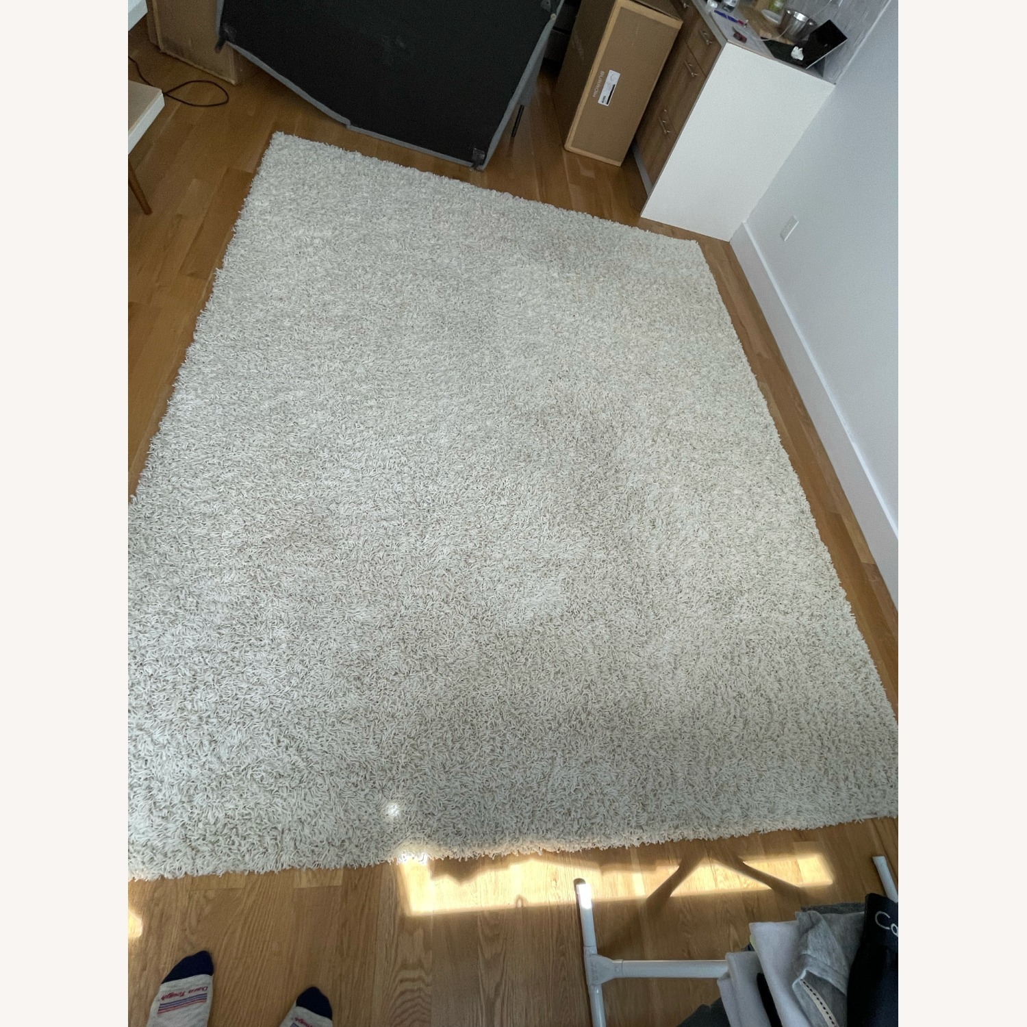 Andover Mills Freemont Ivory Area Rug - image-1
