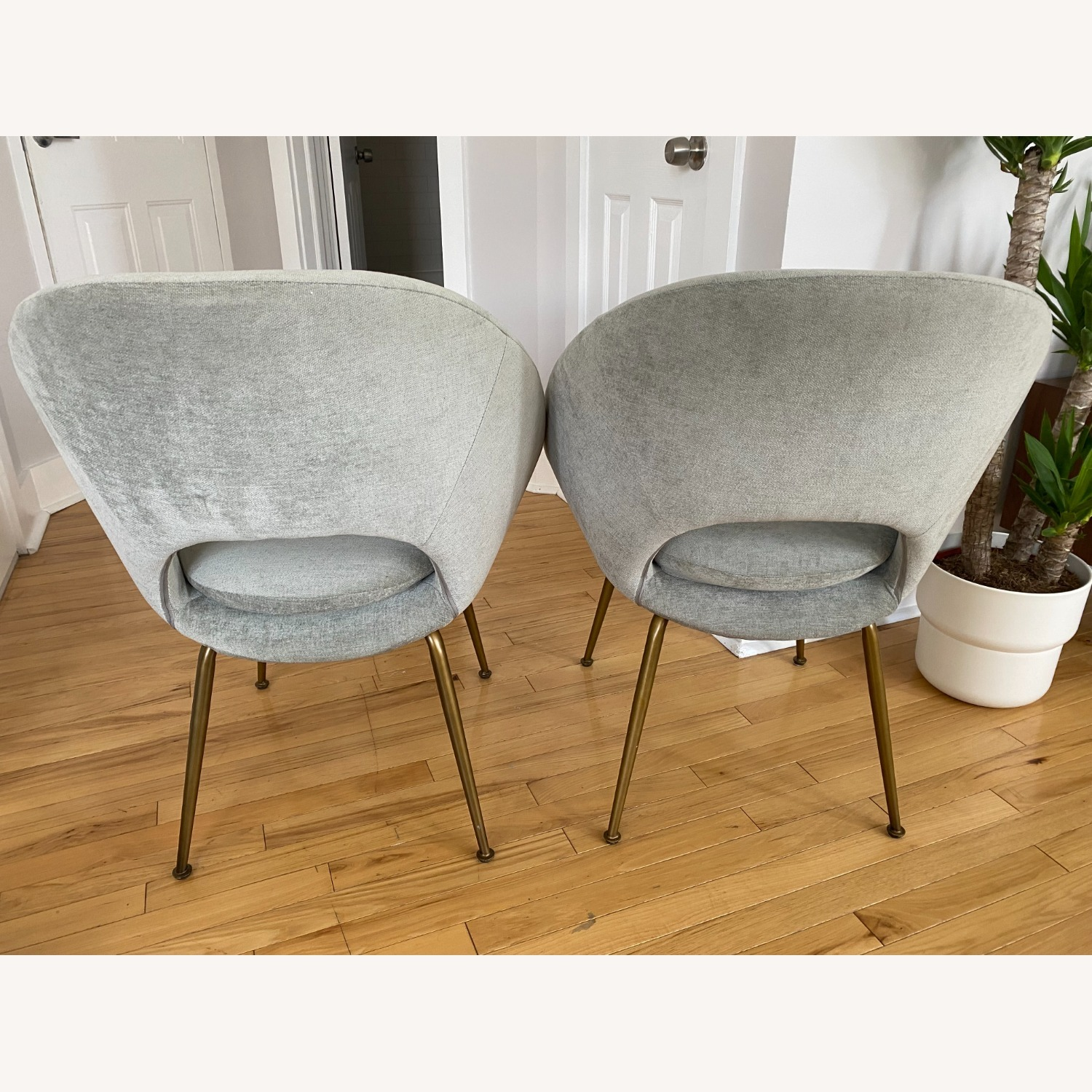 West Elm Orb Dining Chairs - image-8