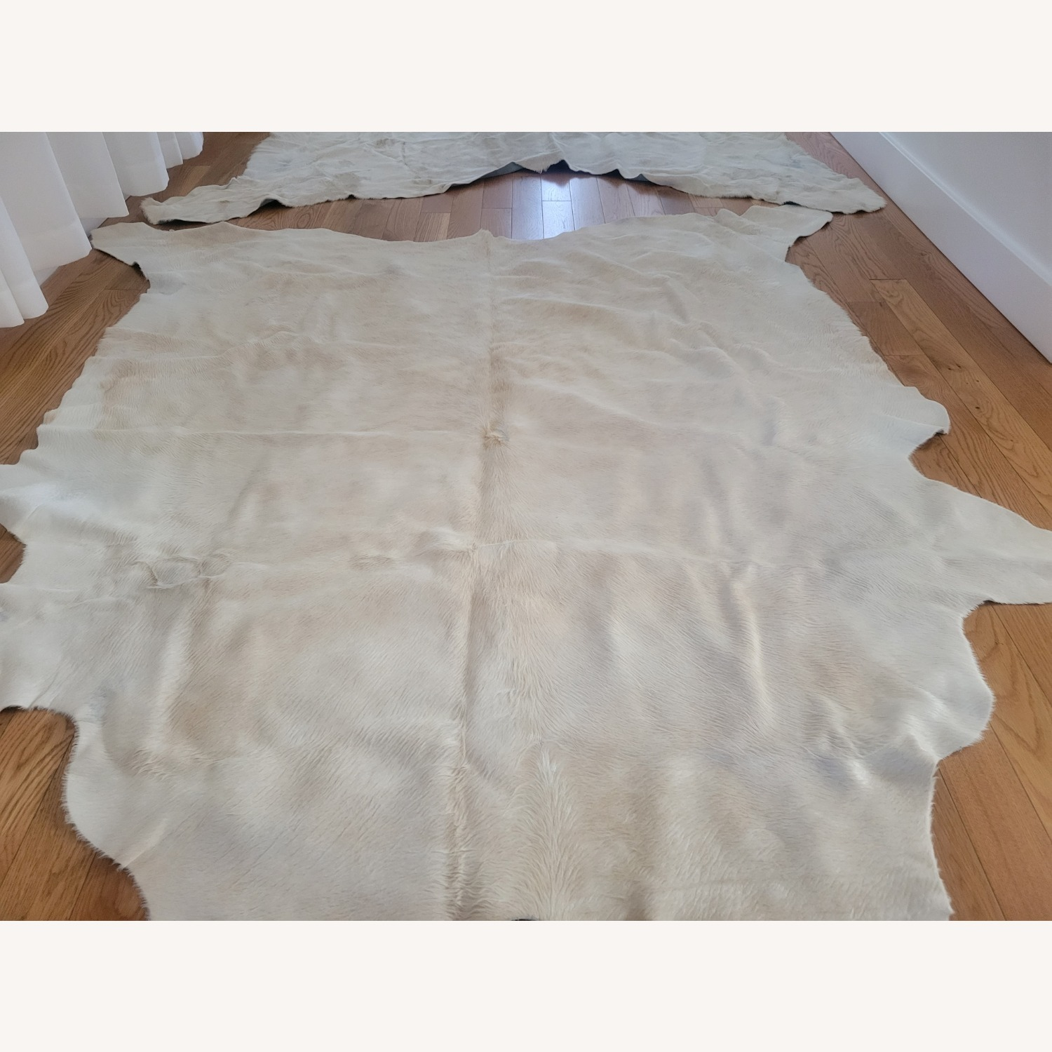 Real Ivory Argentinian Cowhide Rug - image-7