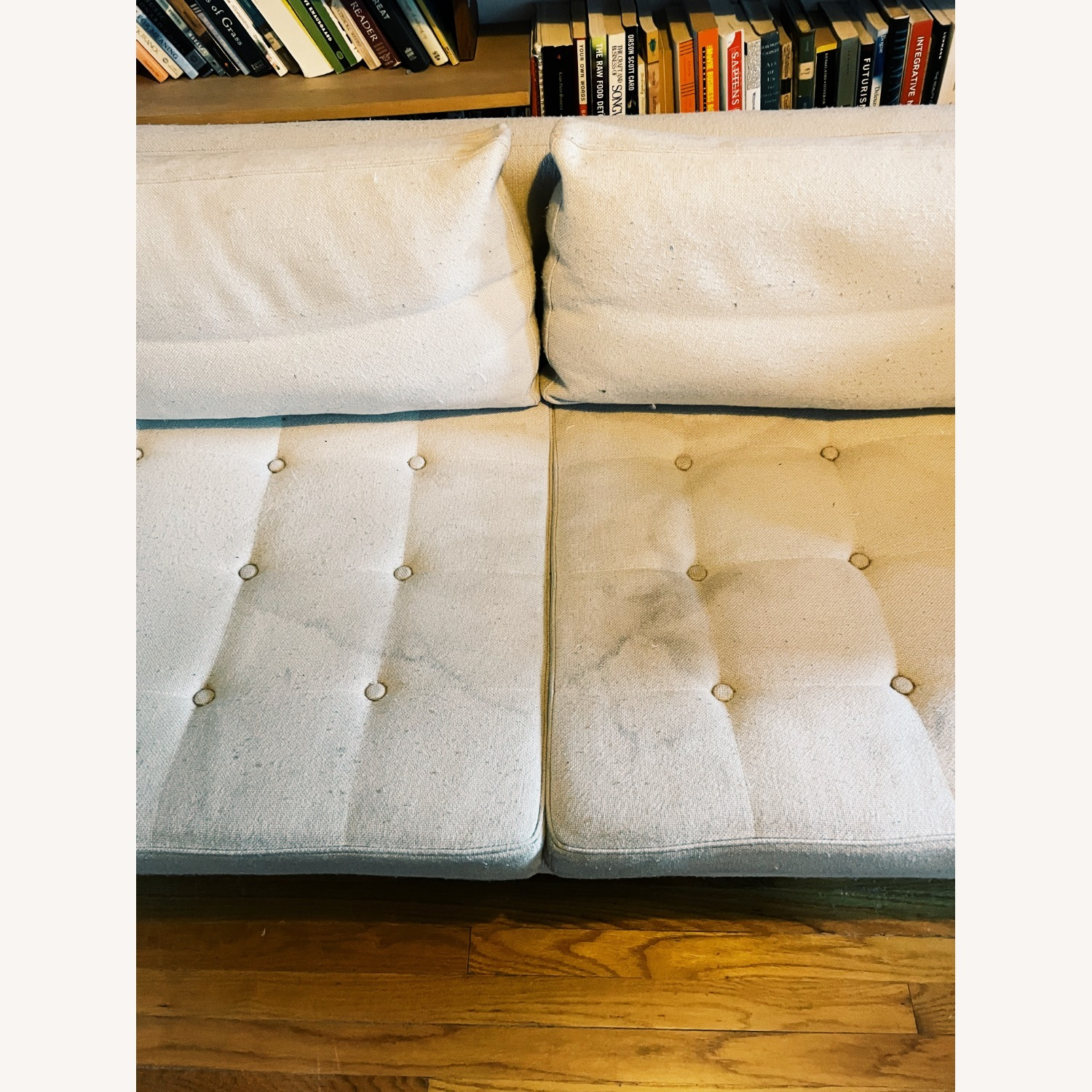 Organic Modernism Siena Loveseat Couch - image-4