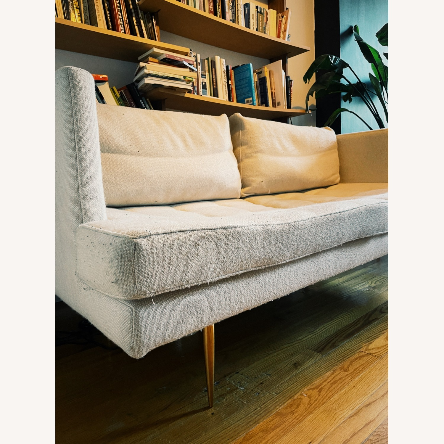 Organic Modernism Siena Loveseat Couch - image-5