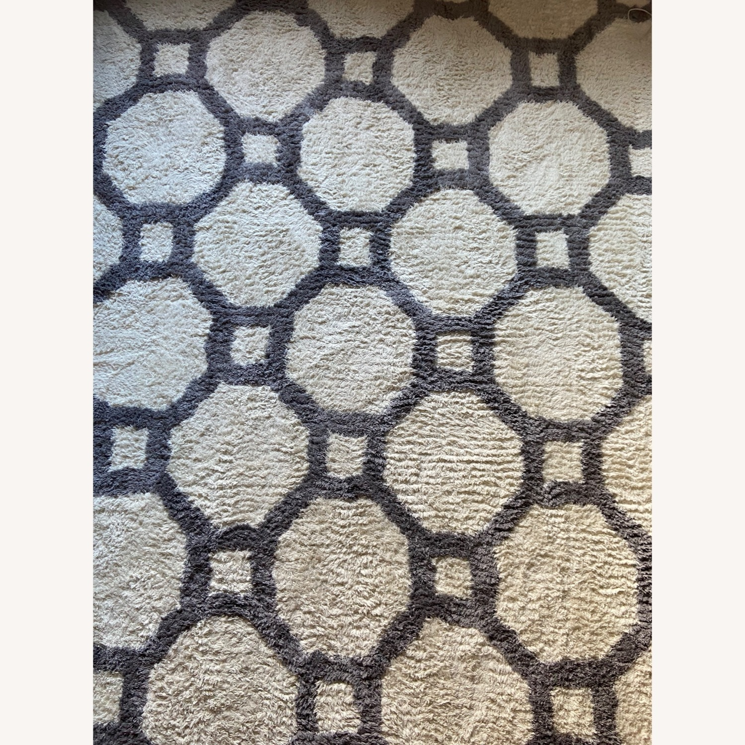 Gray and White Area Rug - image-1