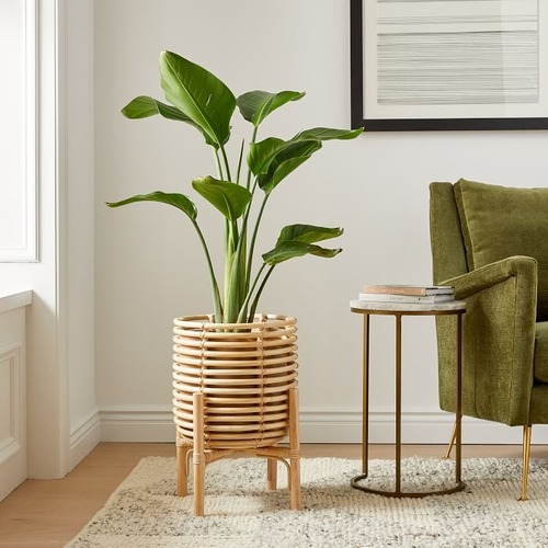 """Used West Elm Adobe Planter, 19.5""""in H, Natural, Rattan for sale on AptDeco"""