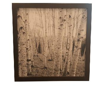 BoConcept Forest Photo Art